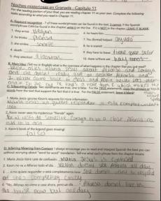 spanish 2 reading